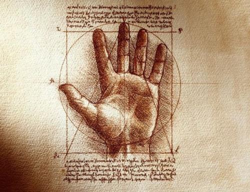 Conoce tu Cuerpo. Taller sobre Anatomía y Fisiología Humana.